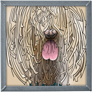 ilustrace komondora